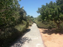El parque en el anana del ` del Ra, Israel Fotografía de archivo libre de regalías