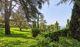 El parque en la costa mediterránea en España Fotografía de archivo
