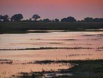 El parque nacional de Chobe en la salida del sol en Botswana, África Fotografía de archivo