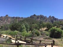 El parque nacional de los pináculos que caminaba área con el musgo cubrió árboles y los altos picos de la cerca se arrastran fotos de archivo libres de regalías