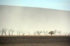 El parque nacional de Namib-Naukluft Fotografía de archivo