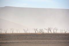 El parque nacional de Namib-Naukluft Fotos de archivo