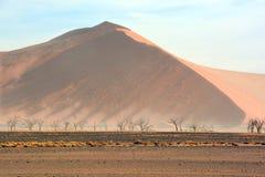 El parque nacional de Namib-Naukluft Fotos de archivo libres de regalías