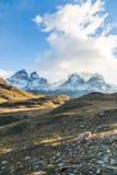 El parque nacional Torres del Paine, Patagonia, Chile Imagen de archivo