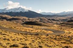 El parque nacional Torres del Paine, Patagonia, Chile Fotografía de archivo