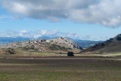 El parque natural Sierra de las Nieves, Andalucía, España foto de archivo