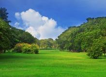 El parque público en el blanco de la ciudad y del cielo azul se nubla Imágenes de archivo libres de regalías