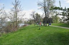 El parque Toronto del farolero ENCENDIDO Imagen de archivo libre de regalías