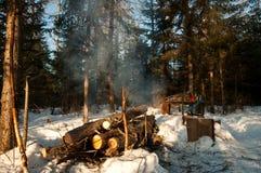 El parquear en el bosque Fotografía de archivo libre de regalías