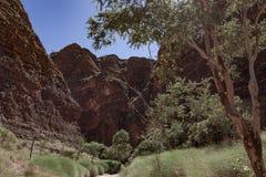 El paseo en la garganta de Catherdral, Purnululu, parque nacional Fotos de archivo