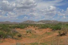 El Paso landskap Arkivfoto