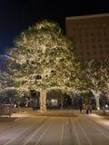 El Paso  Texas royalty free stock photo