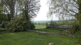 El pasto está vacío fotografía de archivo