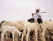 El pastor de Rabari Imagenes de archivo