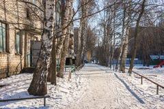 El patio de las construcciones de viviendas en el invierno, entrada, abedul Foto de archivo libre de regalías