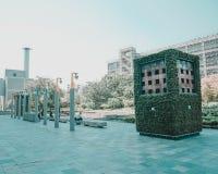 El patio trasero verde fotografía de archivo