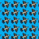 El pato vuela Imágenes de archivo libres de regalías