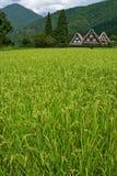 El patrimonio mundial Shirakawa-va. Fotografía de archivo libre de regalías