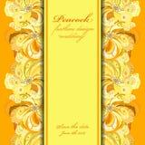 El pavo real amarillo-naranja empluma el fondo del modelo Lugar del texto Imagen de archivo libre de regalías
