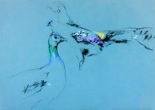 El pavo real y peahen bosquejo Fotografía de archivo libre de regalías