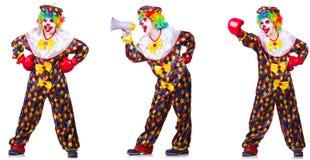 El payaso de sexo masculino divertido con los guantes y el altavoz de boxeo fotos de archivo libres de regalías
