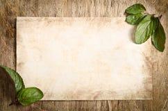 El pedazo de papel viejo con las hojas de menta Imagen de archivo