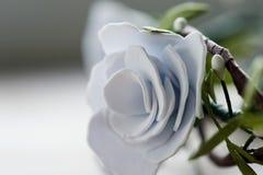 El pelo adorna hecho a mano Para la novia, la imagen fácil y apacible festiva Fotos de archivo libres de regalías