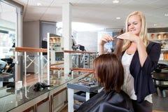 El pelo de Cutting Client del peluquero Fotografía de archivo