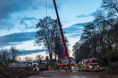 El pelotón del bombero corta un árbol derribado en la calle Foto de archivo libre de regalías