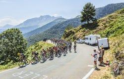 El Peloton en el d'Aspin de la cuesta - Tour de France 2015 Imágenes de archivo libres de regalías