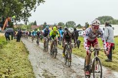 El Peloton en un Tour de France Cobbled 2014 del camino Imágenes de archivo libres de regalías