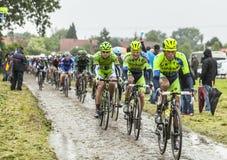 El Peloton en un Tour de France Cobbled 2014 del camino Foto de archivo