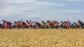 El Peloton - Tour de France 2017 imagen de archivo