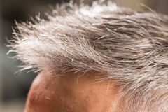 El peluquero corta el pelo imagen de archivo