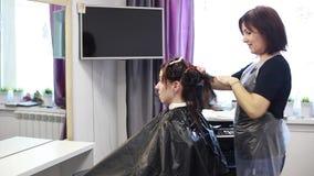 El peluquero peina el cepillo de las mujeres jovenes del pelo, visión general almacen de metraje de vídeo