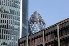 El pepinillo enframed por los edificios circundantes Fotografía de archivo libre de regalías