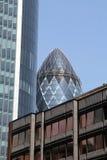 El pepinillo enframed por los edificios circundantes Fotografía de archivo