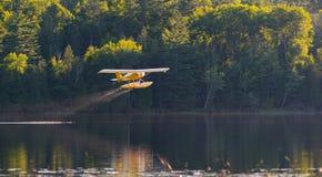 El pequeño aeroplano amarillo en pontón saca de un lago Imágenes de archivo libres de regalías