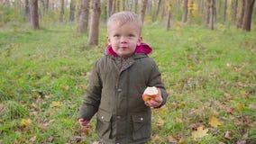 El pequeño bebé lindo en parque del otoño con amarillo deja la consumición de una manzana metrajes