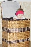 El pequeño bebé lindo se sienta en cesta de mimbre grande Imágenes de archivo libres de regalías