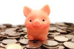 El pequeño cerdo se sienta en monedas Imagen de archivo libre de regalías