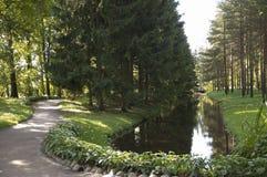 El pequeño lago en el parque Fotografía de archivo