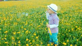 El pequeño muchacho bonito está soplando burbujas en el campo floreciente Imagenes de archivo