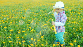 El pequeño muchacho bonito está soplando burbujas en el campo floreciente almacen de metraje de vídeo