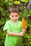 El pequeño muchacho feliz está comiendo zanahorias en un jardín Foto de archivo