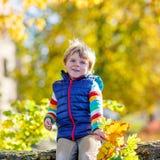 El pequeño niño rubio que juega con amarillo se va en parque del otoño Foto de archivo