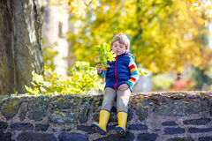 El pequeño niño rubio que juega con amarillo se va en parque del otoño Fotografía de archivo libre de regalías