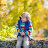 El pequeño niño rubio que juega con amarillo se va en parque del otoño Fotografía de archivo