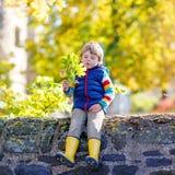 El pequeño niño rubio que juega con amarillo se va en parque del otoño Imagenes de archivo