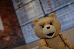 El pequeño oso está mirando su cara imagen de archivo